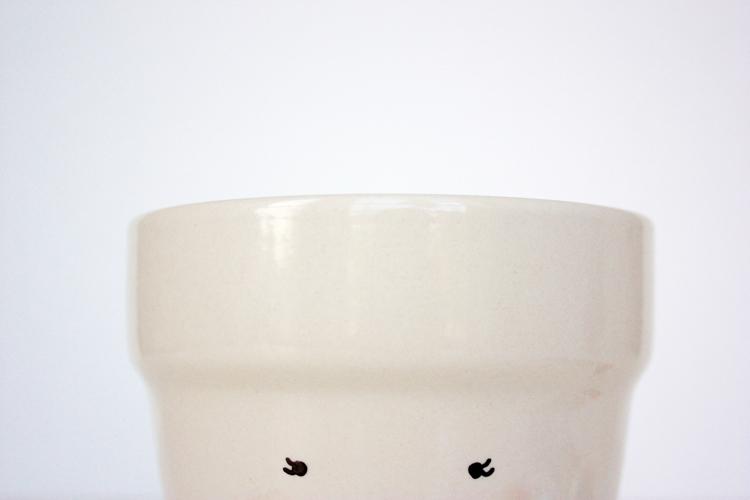 DIY Face Plant Pot -One Little Minute Blog-3