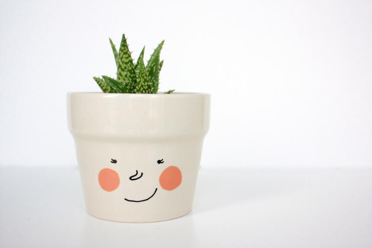 Delightful Face Plant Pot Part - 4: DIY Face Plant Pot -One Little Minute Blog-4