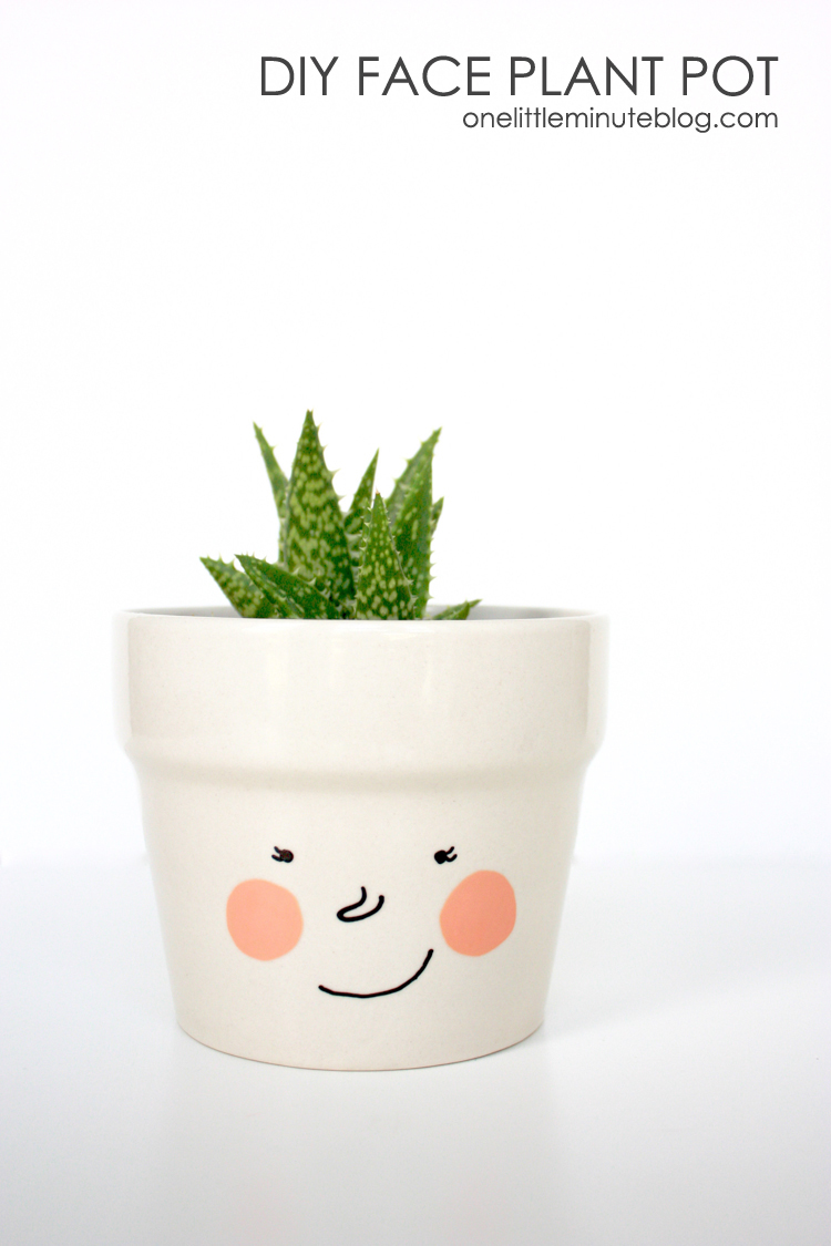 DIY Face Plant Pot -One Little Minute Blog-6