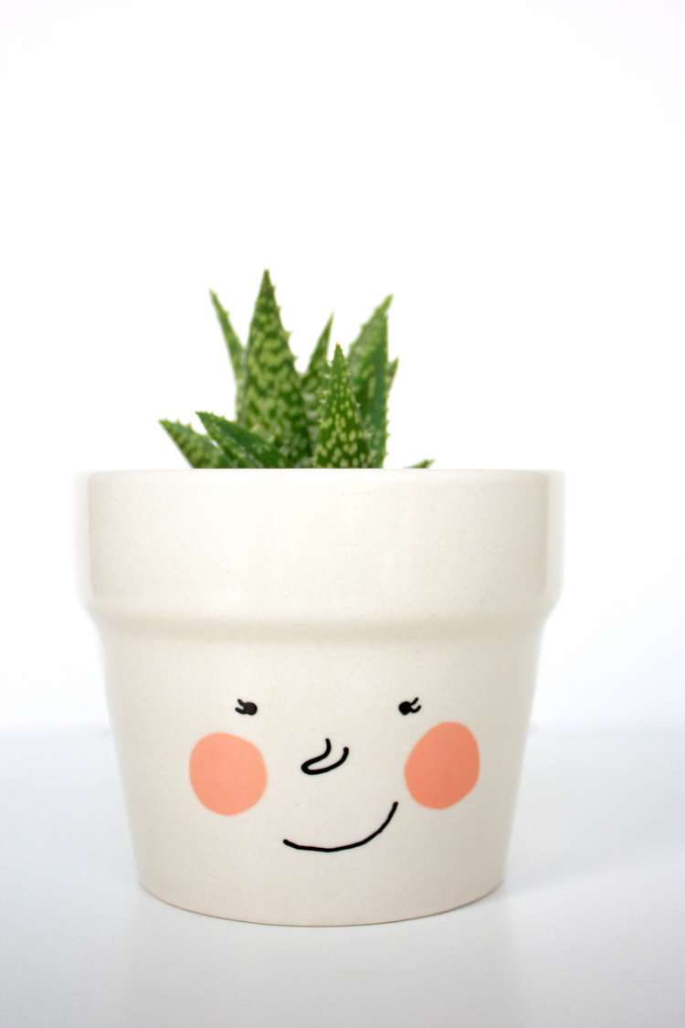 DIY Face Plant Pot -One Little Minute Blog-7