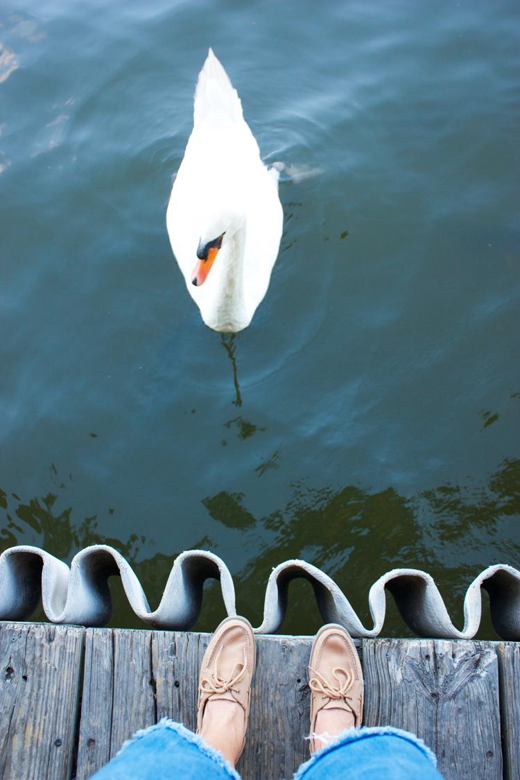 Austin, TX Lake Activities- One Little Minute Blog-4