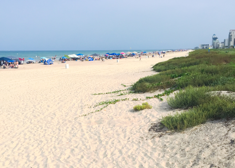 South Padre Island -One Little Minute Blog-4
