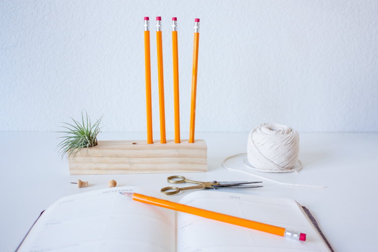 Wooden Air Plant + Pencil Holder DIY-104