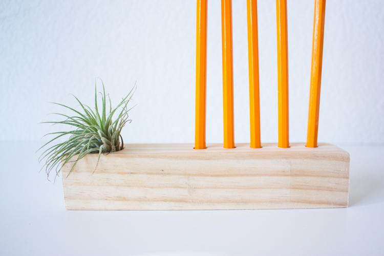 Wooden Air Plant + Pencil Holder DIY-105