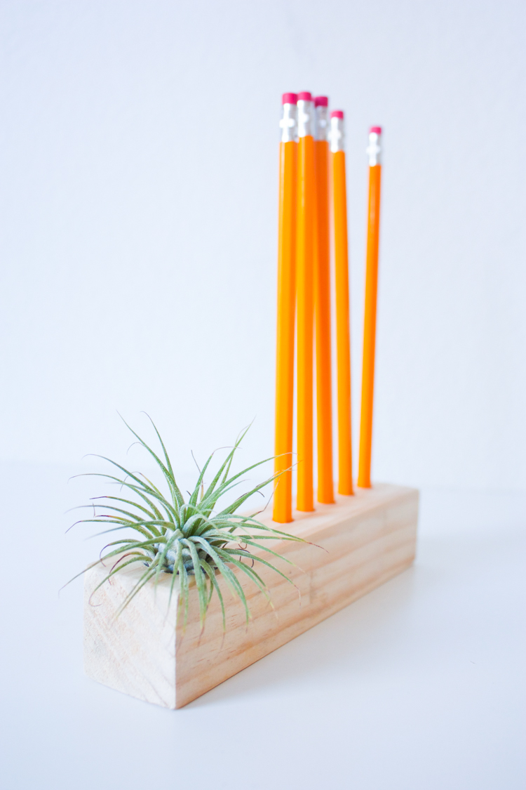 Wooden Air Plant + Pencil Holder DIY-53
