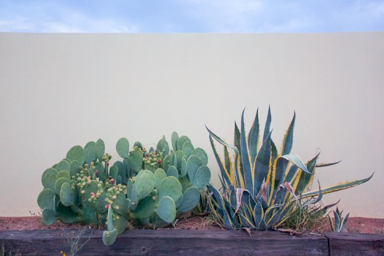 Marfa, TX-One Little Minute Blog-61