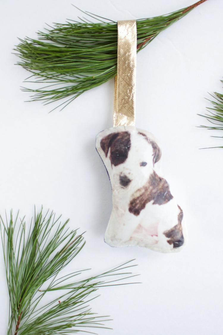 DIY Pet Ornament- One Little Minute Blog-11