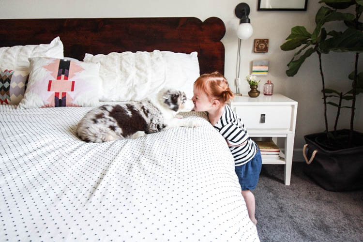 The Best Time To Get A Dog- One Little Minute Blog-13