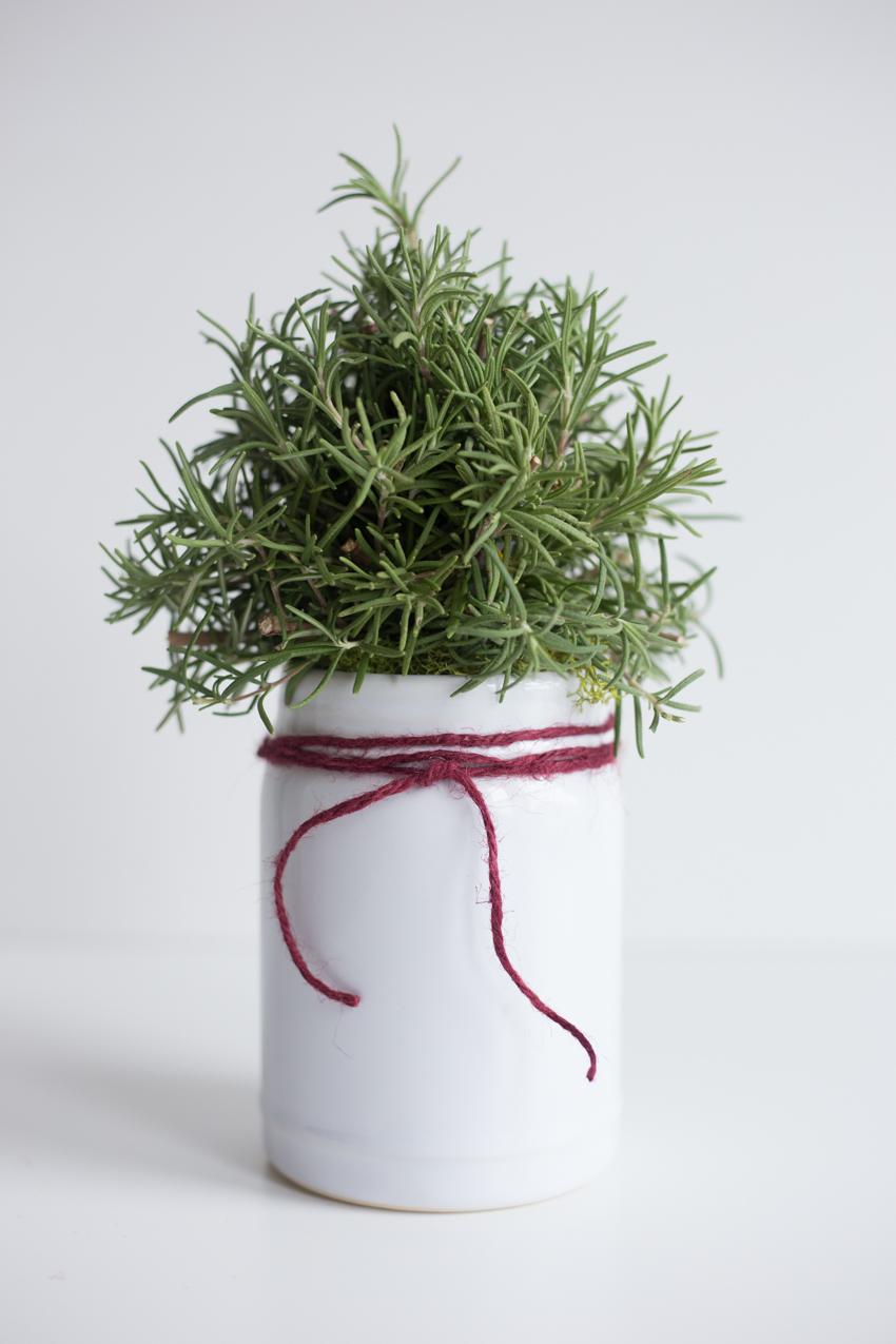 rosemary-christmas-tree-diy-1