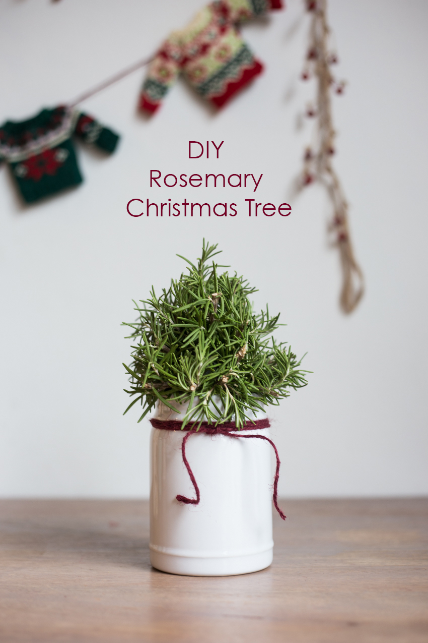 DIY Rosemary Christmas Trees - Live Free Creative Co
