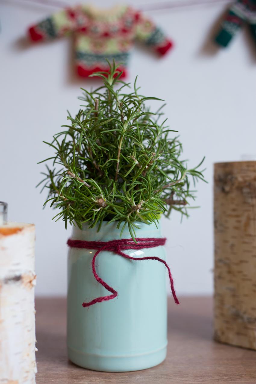 rosemary-christmas-tree-diy-7