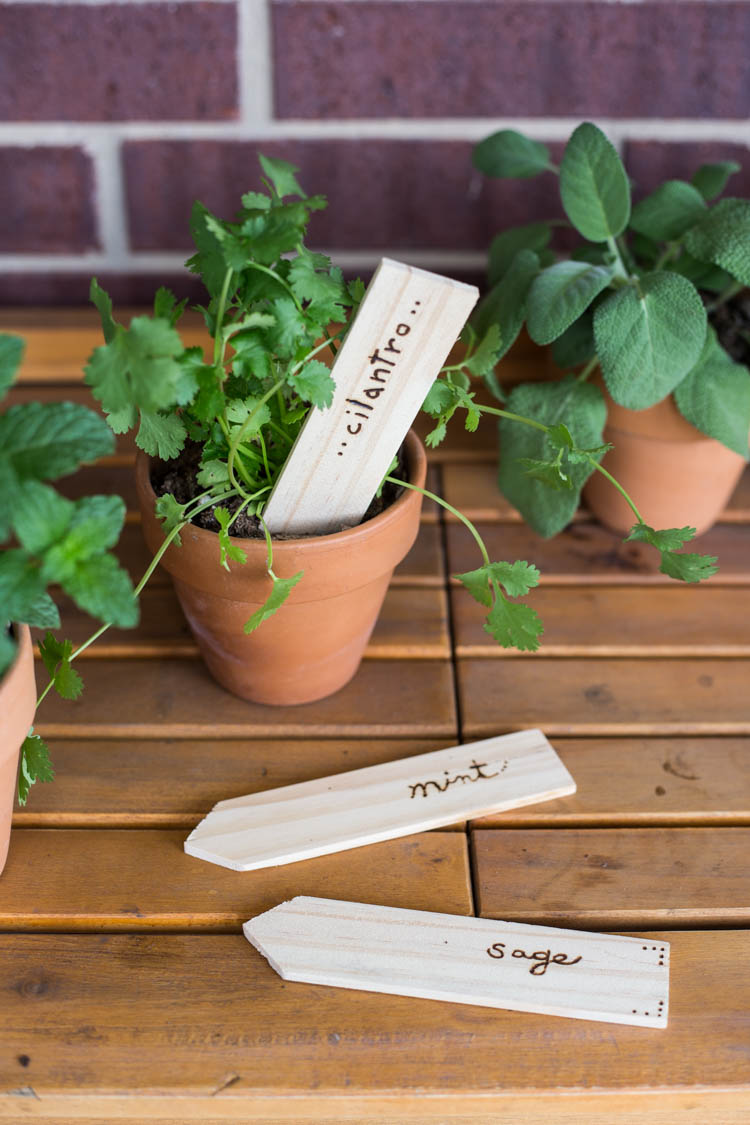 Wood Burned Garden Stakes DIY - Live Free Creative Co