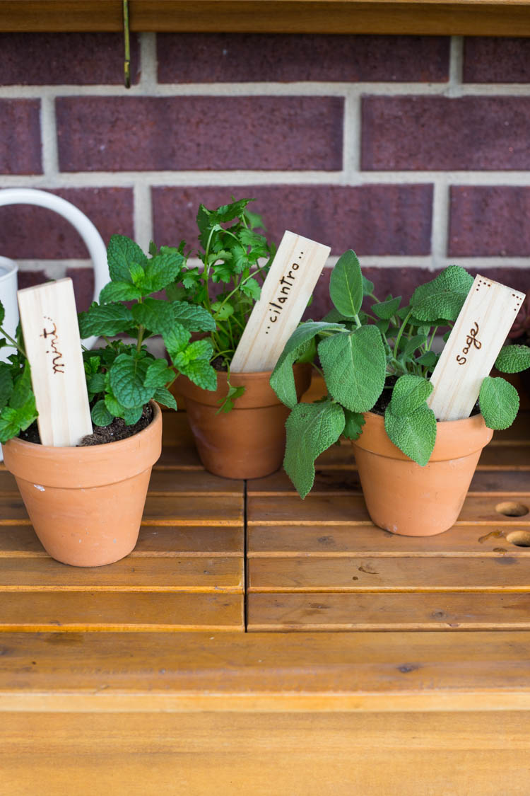 Wood Burned Garden Stakes DIY 6
