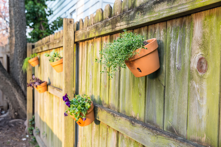 ... Intense Remodeling, It Was Really Fun To Start And Finish A Quick, Easy  Backyard Project. Especially One That Had Such Instant IMPACT! The Herbs  Are ...