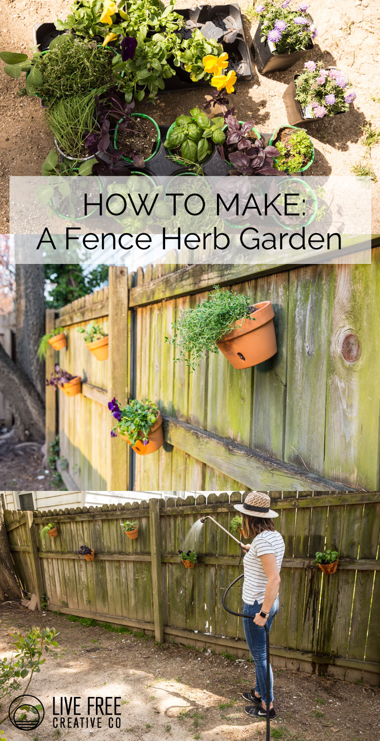 The Herbs Are Easy To Get To For Using In The Kitchen, Easy To Water  Standing Up, And Very Easy On The Eyes. I Love This Little Piece Of Fence  So Much More ...